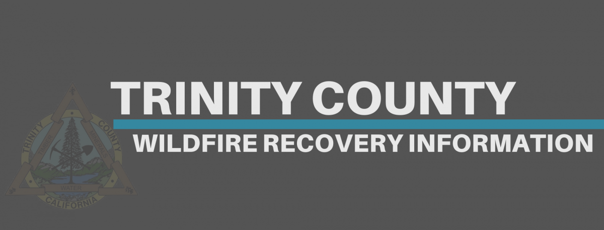 Trinity County Recovery Information