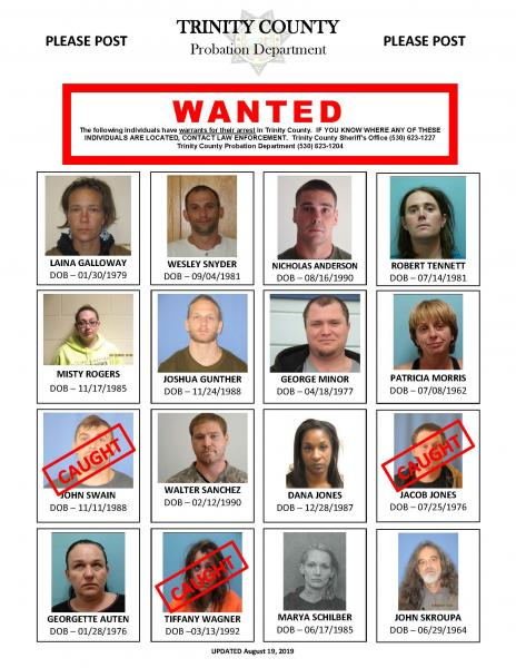 Probations Most Wanted Poster